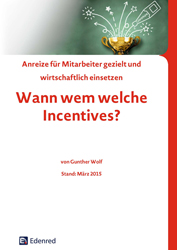 Literatur Anreizsystem Incentive
