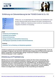 Variable Vergütung Fachartikel Fallstudie: Einführung von Zielvereinbarung